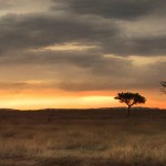 Sunset at Serengeti